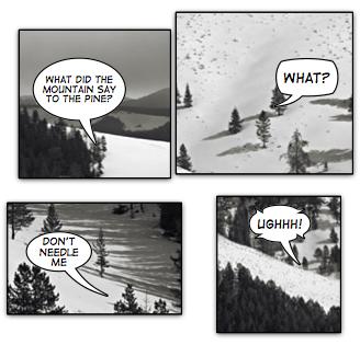 landscape dialogues