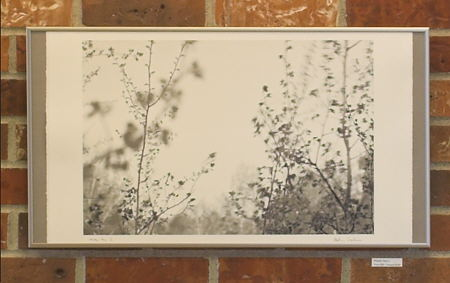 Framing with exposed deckle edge