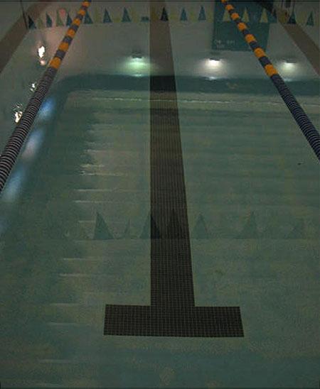 Notre dame pool #1P&R
